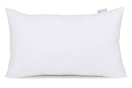 pillow insert 24x16 - 7
