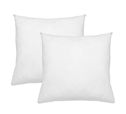 Digital Decor Premium Hypoallergenic Pillow Insert Sham Square Form, Standard/White (26' x 26', Double Pack)