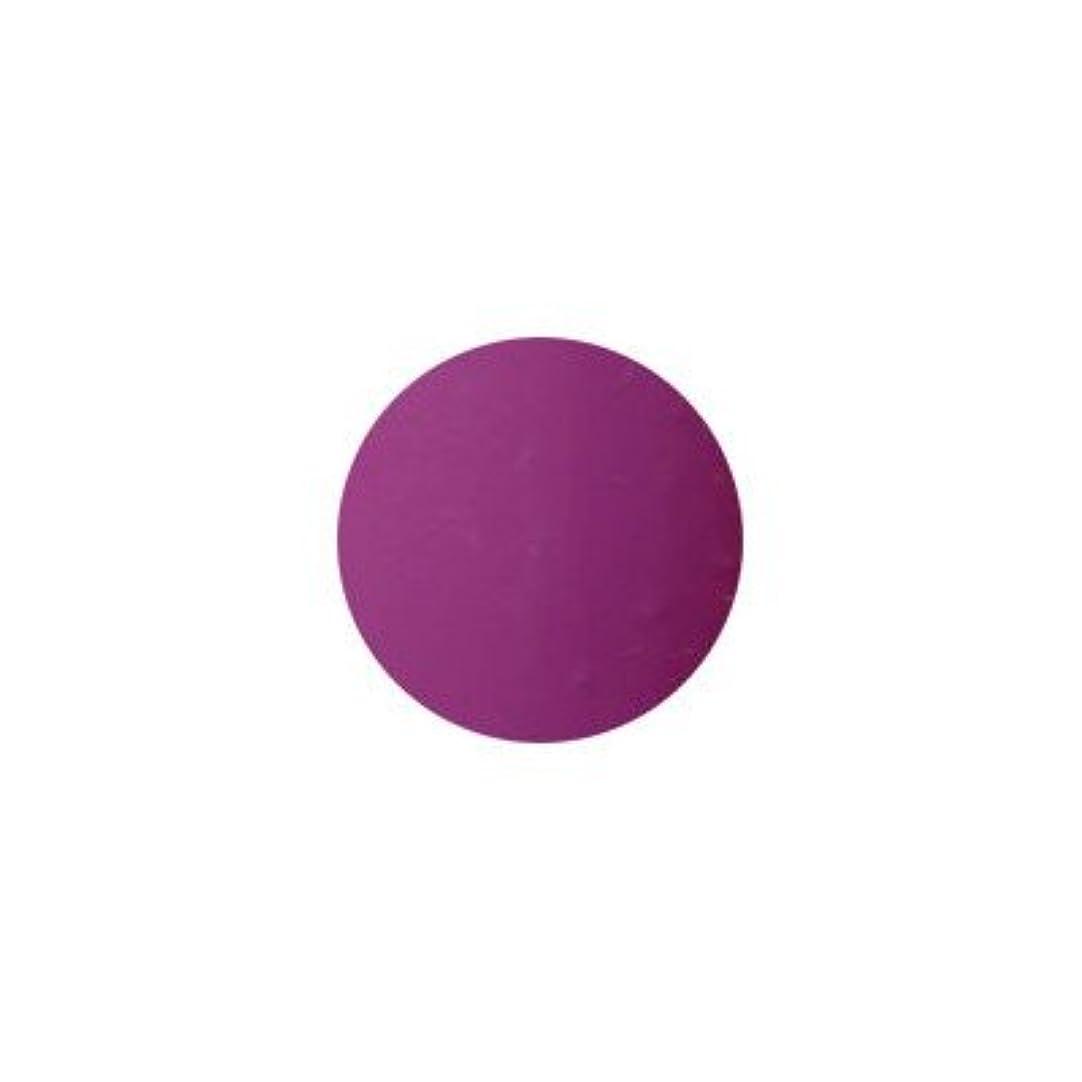 非常に胚抽象プティール カラージェル ラヴィング L28 ノーブルパープル