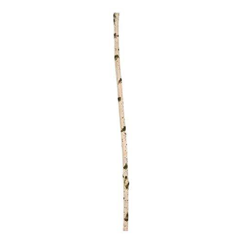 Zweigedeko Birkenstamm 100 cm, Durchmesser ± 3 cm
