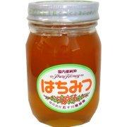五十川養蜂園 国産はちみつ 混花 500g ×2セット