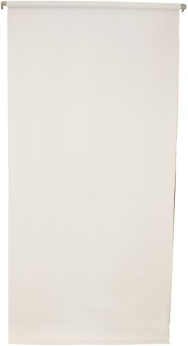 Sale- Work from Home - 2.5'X5' Wall-Mounted White Rollup Background System Perfect for Passport ID Photos