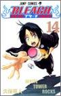BLEACH 14 (ジャンプコミックス)