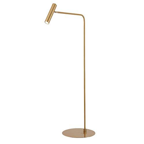 EIU Gold Terra LED plafondlamp draaibaar Terra voor woonkamer slaapkamer eenvoudige perzik in voet lamp Terra 140 cm M20-02-17