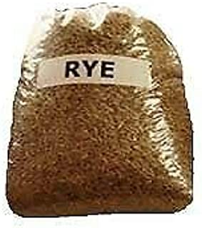25 LBS Winter Rye Seed - Cover Crop, Food Plot Deer, Wildlife, Garden Cover Crop
