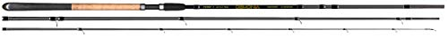 Fishing Tackle Max FTM Demonia Match 3,90m 3tlg 5-25g 3300309 Matchrute