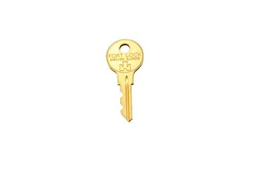Löwen Schlüssel für Schloss Matrixtür SM94 SM96 HB8 L54G L550 E908152