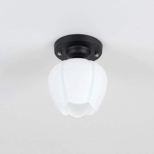 YANQING Duurzame Plafondlampen Moderne Minimalistische Circulaire Plafonds, Glazen lampenkap, Warm Balkon Aisle Slaapkamer Verlichting Plafondlampen (Maat: C), Kleur:D