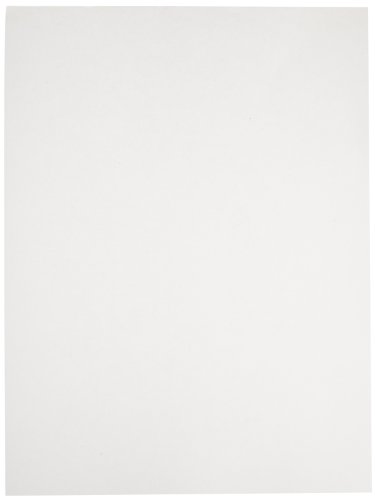 12 x 18 white drawing paper - 8