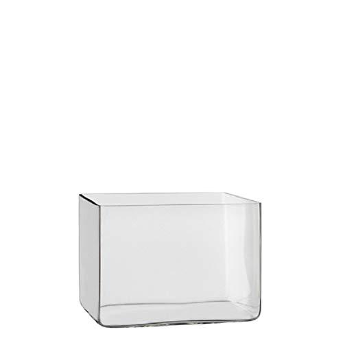 Lage vaas/accubak transparant glas rechthoekig 20 x 16 x 14 cm Transparant