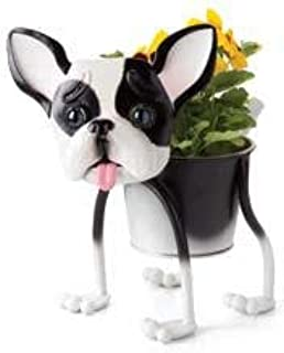 Best dog planters for sale Reviews