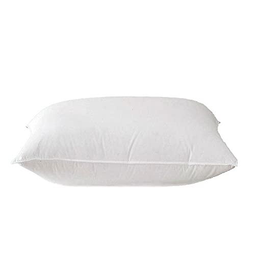 YANGYUAN Almohadas de plumón de ganso blanco suave, para leer o descansar en casa, tela de algodón de doble capa, suave y cómoda (45 x 45 cm, tamaño: 55 cm)