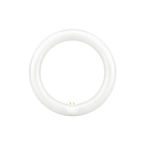 Tubo T9 fluorescente LED con Imán blanco anillo circular 4000K 6000K blanco 15W 20W 32W (6000K, 32W 40CM)