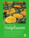 Heilpflanzen: Selbstbehandlung der häufigsten Alltagsbeschwerden und Erkrankungen mit ausgewählten Heilpflanzen. Bewährte Rezepte für Tees, ... Salben, Inhalationen, Umschläge, Bäder