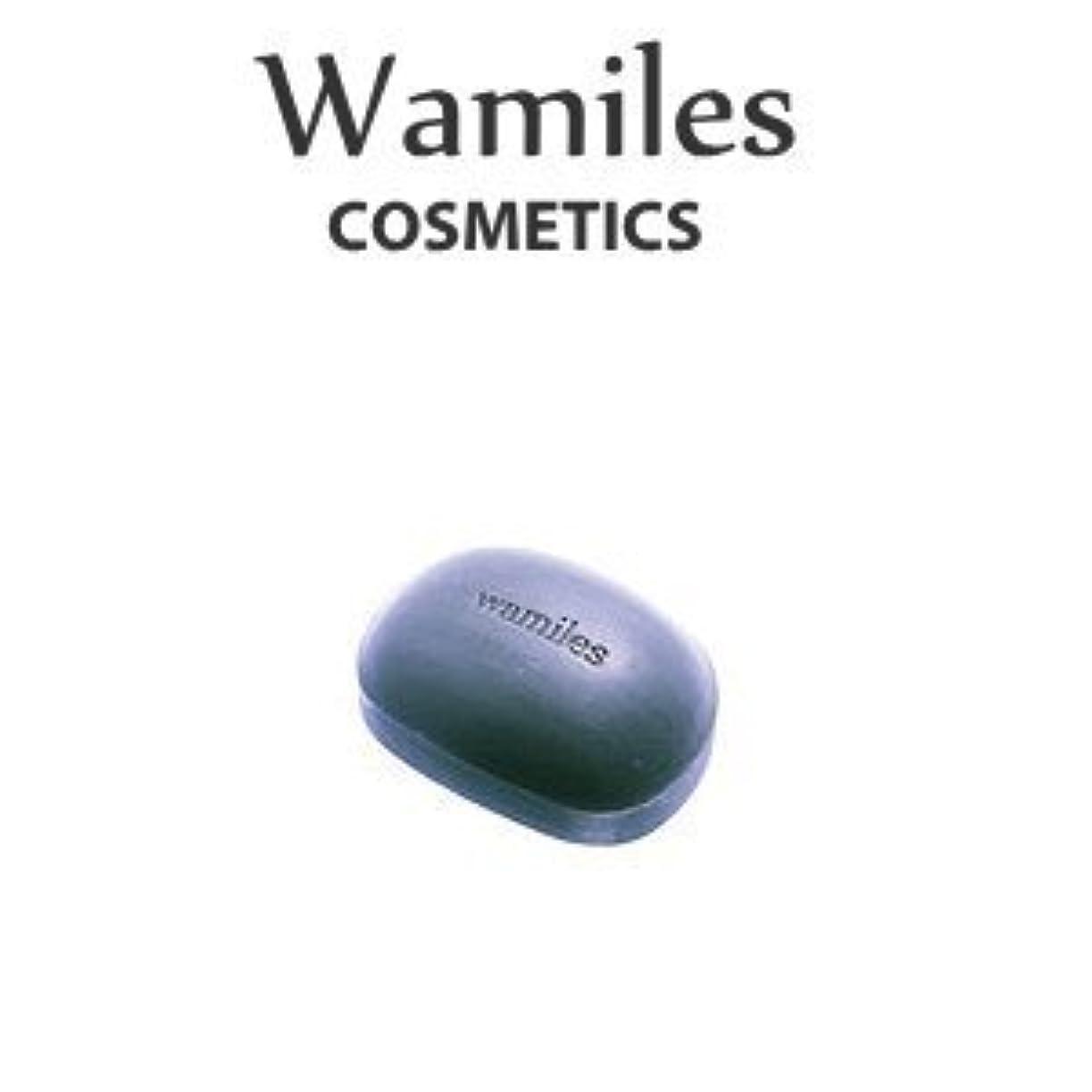 社交的フラップ闘争wamiles/ワミレス ベーシックライン イオンヌ クレイソープ 100g