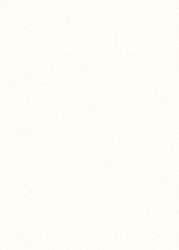 Premium-Ambiente MUSTER67 Dekor-Muster EURODEKOR® (67 Premiumweiss)