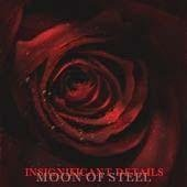 Insignificant Details by Moon of Steel