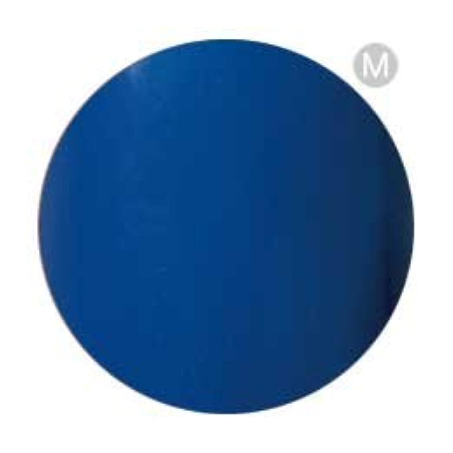 まぶしさ写真のカスタムPalms Graceful カラージェル 3g 004 ブルー