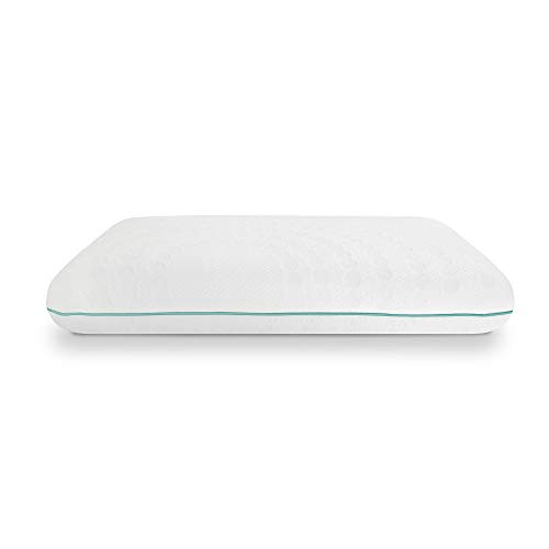 SensorPEDIC Eucalyptus Bed Pillow, Standard, White/Green