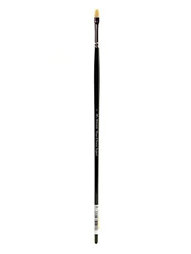Winsor & Newton - Pinceles Winton para óleo o acrílico, pelo de cerda, mango largo,plano corto nº 2