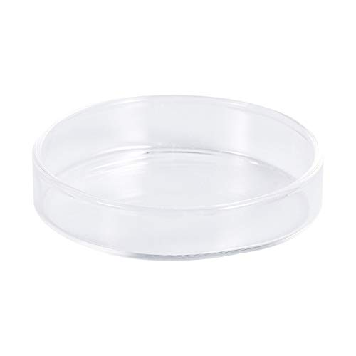POPETPOP Glasgarnelen-Nahrungsmittelteller-transparente runde Teller-kleine Fisch-Fütterungsschüssel