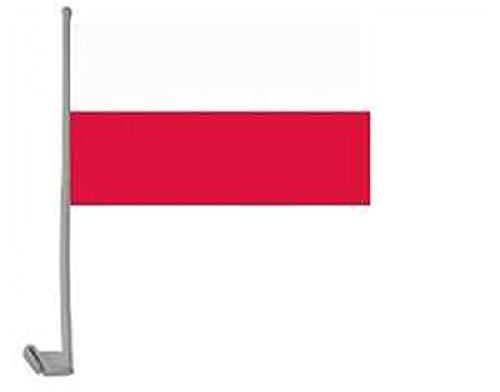 Polen Autofahne-OS
