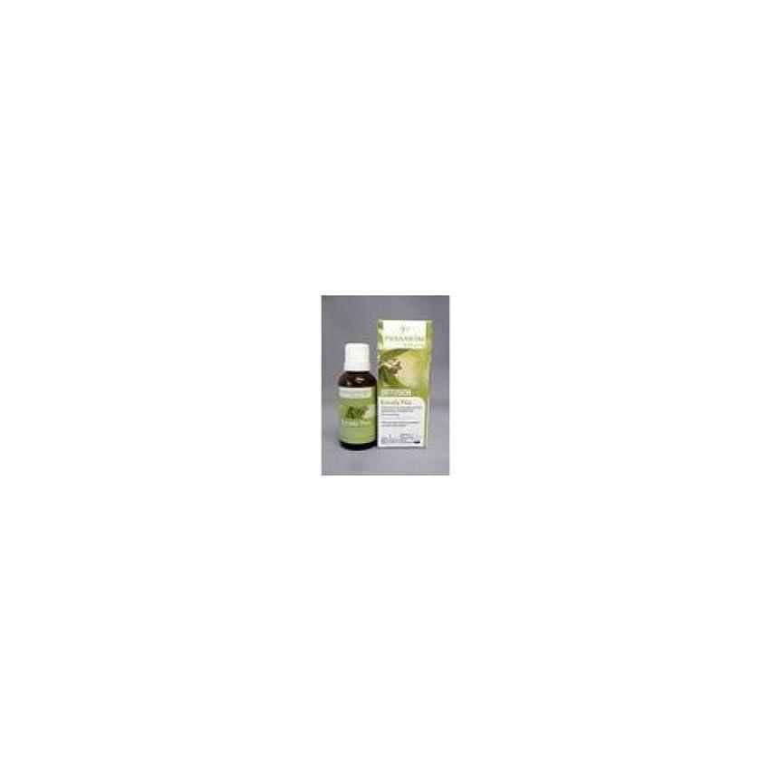 十代ネックレス放棄された胸一杯のフレッシュエア ユーカリプラス(30mg)/プラナロム社のエアフレッシュナー