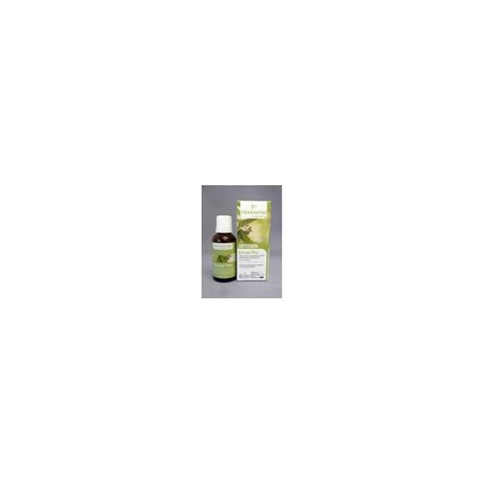 活気づくわな文房具胸一杯のフレッシュエア ユーカリプラス(30mg)/プラナロム社のエアフレッシュナー