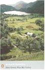 Modern Classics How Green Was My Valley (Penguin Modern Classics)