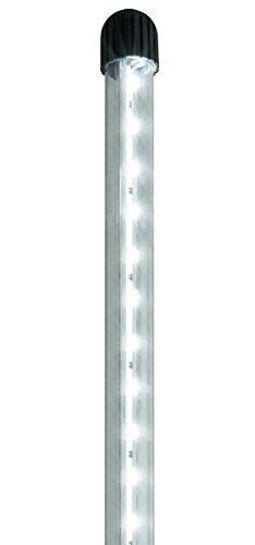 Juwel Aquarium 49280 NovoLux LED 80 weiß