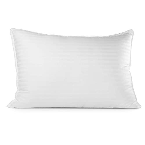 Beckham Pillow, Queen (Pack of 1), White