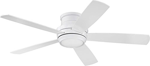Craftmade Flush Mount Ceiling Fan with LED Light and Remote...