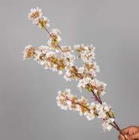 YYCVVH Flores Artificiales Flor de Cerezo Ramo de Flores Falsas para decoración de hogar, Cocina, Sala de Estar, Comedor, Mesa de Boda 5 Palos