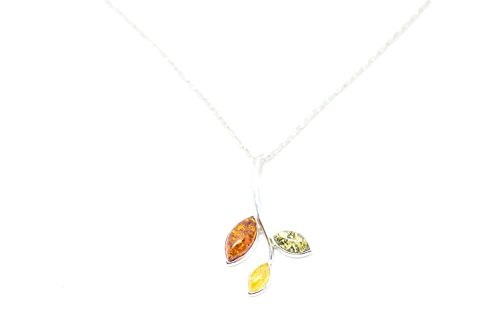 Multicolour Amber Pendant with Sterling Silver Chain