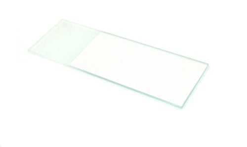 Eisco Labs Microscope Glass Slides with Frosted End, Pack of 144 - Ground and Polished Edges