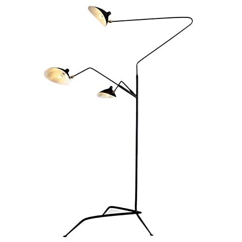 Luces Decorativas Nordic Retro Llenado Ubicación Personalidad Sala de estar Vertical Floor Lámpara Estudio Ins Ins Instalado Dientes de viento Danza Danza Claw Lámpara de lectura Lámparas