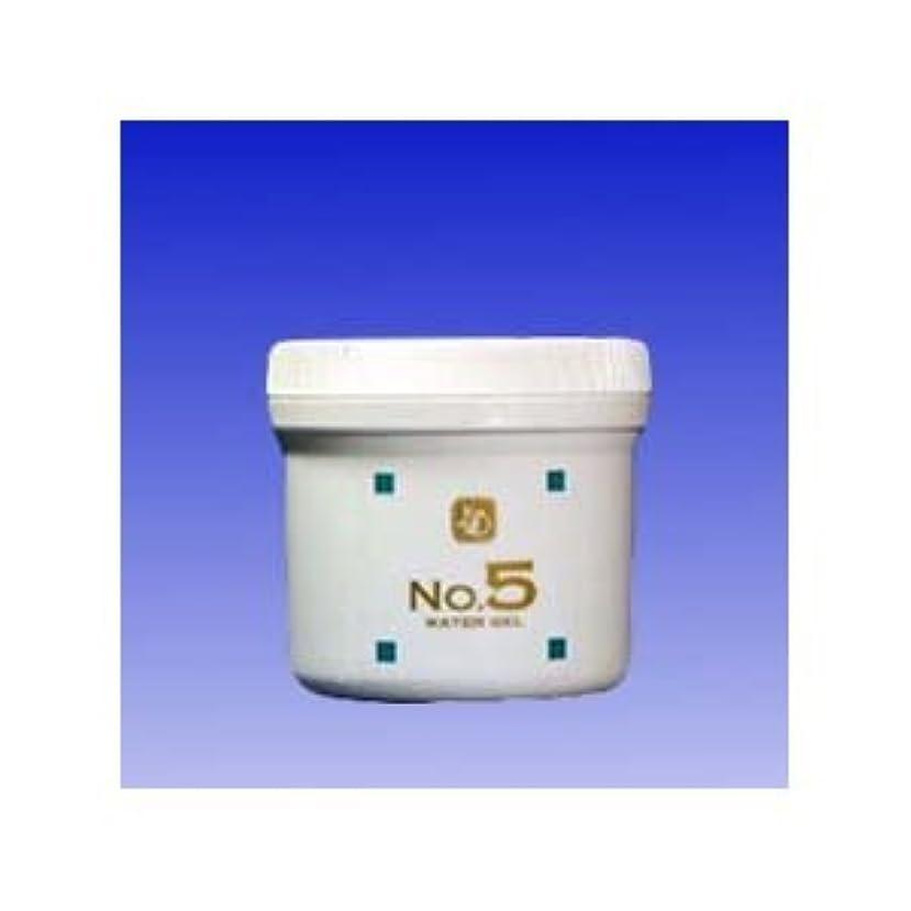 語絶え間ない準備する顔を洗う水 ウォーターグルNO5 250g