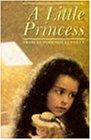 A Little Princess (Children's Classics and Modern Classics)