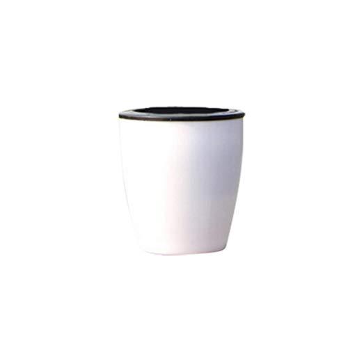 Koojawind Lazy Flower Pot Automatische Wasseraufnahme Plastiktopf GrüNpflanze Wasserkultur, Saugnapf Wasser HäNgepflanzen Topf, Wandbehang Blumentopf FensterkäSten