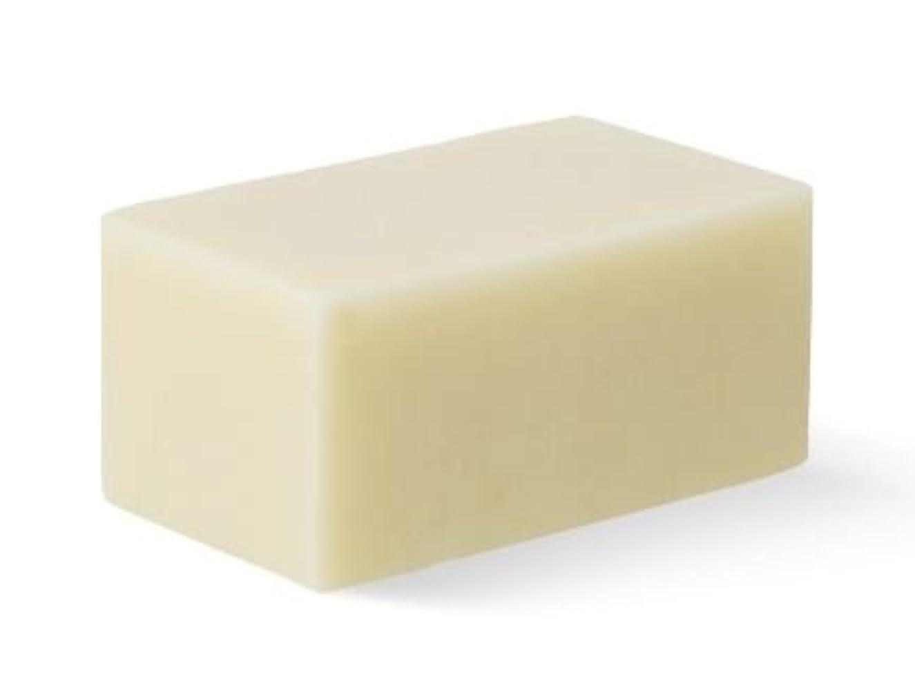 夜の動物園道徳教育経済的[Abib] Facial Soap ivory Brick 100g/[アビブ]フェイシャルソープ アイボリー ブリック100g [並行輸入品]