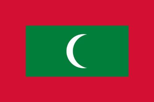 8,4 x 5,4 cm Autocollant pour voiture drapeau des Maldives Drapeaux autocollant pour voiture moto Housse ordinateur portable