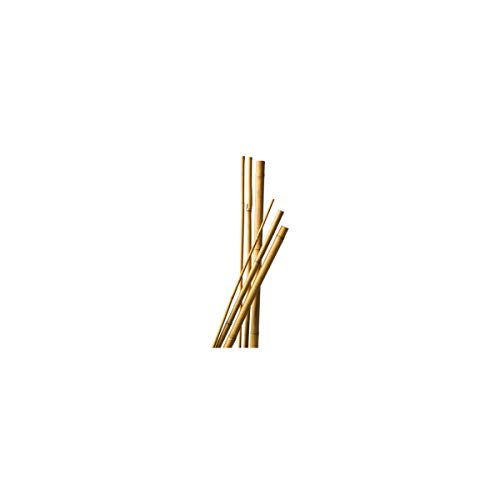 Multitanks - Lot de 10 Tuteurs Bambou 120 cm diam 6-8 mm