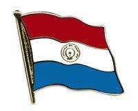 Paraguay Flaggen Pin Fahnen Pin Flaggenpin