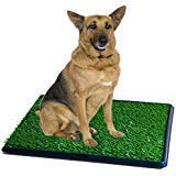 Synturfmats Pet Potty