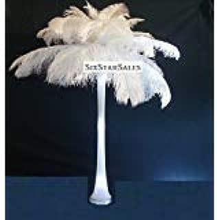 Special Sale Ostrich Feathers Wholesale Bulk 14-18