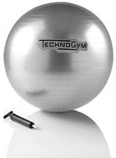 [テクノジム] ウェルネスボール エクササイズボール TECHNOGYM WELLNESS BALL (Silver 直径55cm / Black 直径65cm)