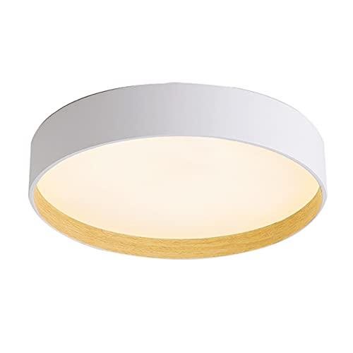 Illumination Sala de lámpara de Techo led de Techo, lámpara de baño Moderna de 24 W, Comedor de Pasillo de balcón de Dormitorio Disponible (Color : B, Size : 40cm)