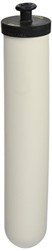 Doulton Ultracarb 10' Water Filter Candle, 2-pack (W9123053)