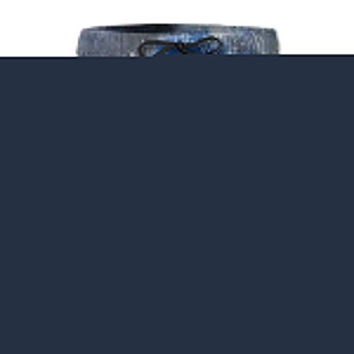 LarissaHi Blue Galaxy Lion Print Männer Casual Shorts Badehose Beachwear Badeanzüge Golf Shorts 2XL
