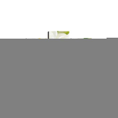DAIZHJ Modular Canvas Wall Art Foto's Home Decor 5 Stuks Witte Rozen Schilderijen Voor Woonkamer HD Gedrukte Bloemen Poster
